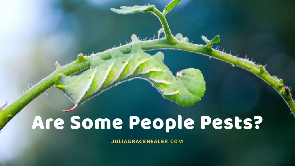 Are Some People Pests In Your Life?